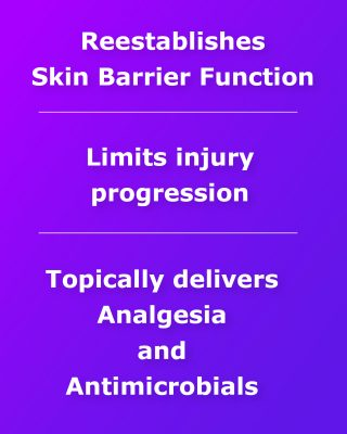 Reestablishes skin barrier function, limits injury progression, topically delivers analgesia and antimicrobials